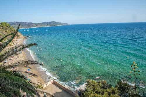 Küste am Mittelmeer nahe Saint Tropez mit Palmen von der Klippe
