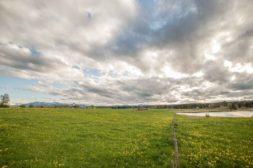 bayrisches Voralpen Land mit blühender Wiese, Dorf und Bergen im Hintergrund