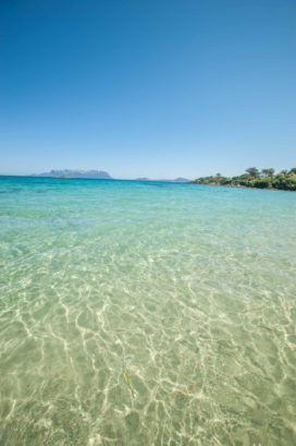 glasklares Wasser mit Blick auf das Meer auf La Maddalena