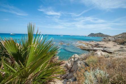 Nähe Saint Tropez - Plage de l'amour mit Palmen und türkisem Wasser
