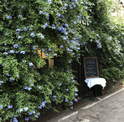 Restaurant von außen mit einer bewachsenen Hecke mit blauen Blüten