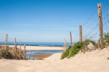 Surfen und Camping Campingplatz Wohnwagen Zelten Le Saint Martin Atlantik Baden Dünen Surfkurs Sommer Strand Urlaub Stellplatz Strandzugang Meer