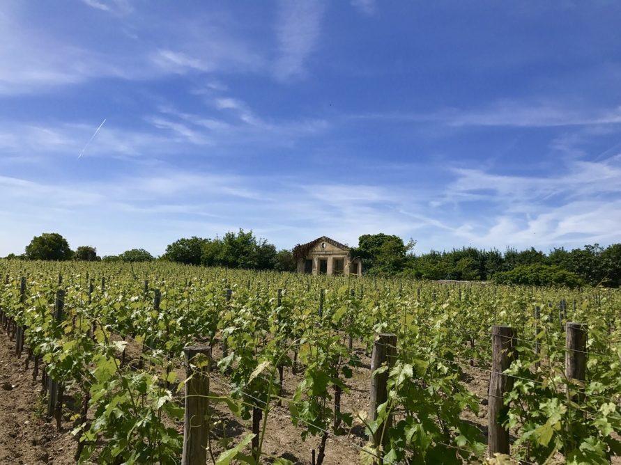 Campingplatz Tipp auf dem Weg nach Frankreich zum Atlantik für eine Zwischenübernachtung Dordogne Landschaft Weingut Ergebnisse für saint emilion Stattdessen suchen nach: saint emillon Suchergebnisse Webergebnisse Saint-Émilion