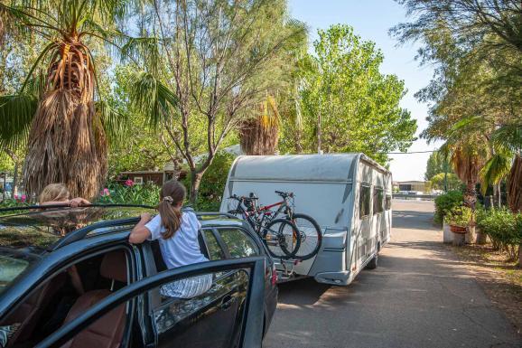 Ankunft vom Wohnwagen Gespann auf einem Campingplatz bei der Rezeption mit Palmen und Kindern, die in den Autofenstern sitzen