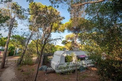 Wohnwagen von der Seite auf dem Stellplatz mit Bäumen, Sträuchern, Handtüchern und Fahrrädern - Camping in Apulien