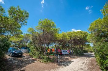 Stellplätze unter Bäumen mit Schatten Riva di Ugento - Camping in Apulien