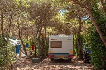 Wohnwagen auf Stellplatz Suche unter Bäumen auf dem Campingplatz - Camping in Apulien