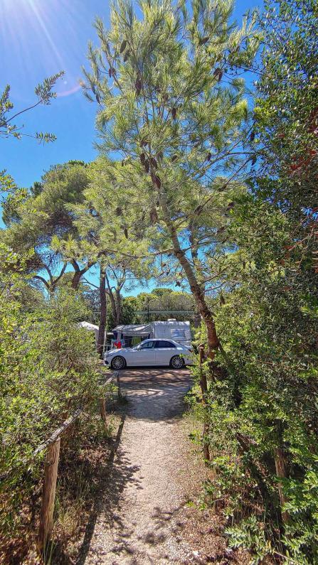 dicht bewachsener Weg auf dem Campingplatz Riva di Ugento mit Campern im Hintergrund