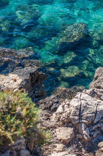 glasklares Meer mt Felsen und grünen Pflanzen - Hinterland von Salento