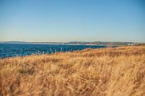 Küstenstreifen nähe Gallipoli - Hinterland von Salento
