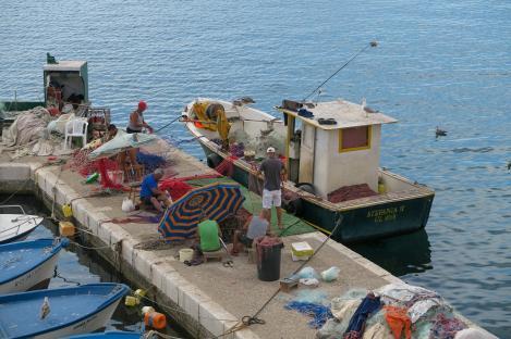 Fischer im Hafen von Gallipoli beim Ausladen des Fanges - Hinterland von Salento